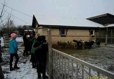 Экскурсия  в «Русскую деревню» села Карандеевка