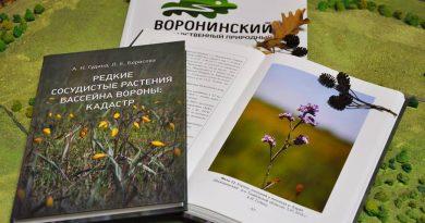 Вышла в свет книга «Редкие сосудистые растения бассейна Вороны: кадастр»