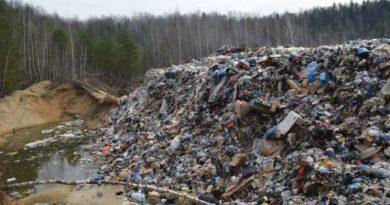 В регионе шесть мусорных полигонов рекультивируют